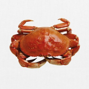 Red crab - EarthPositive Tote Bag