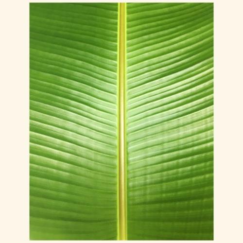 palm - Bio-Stoffbeutel