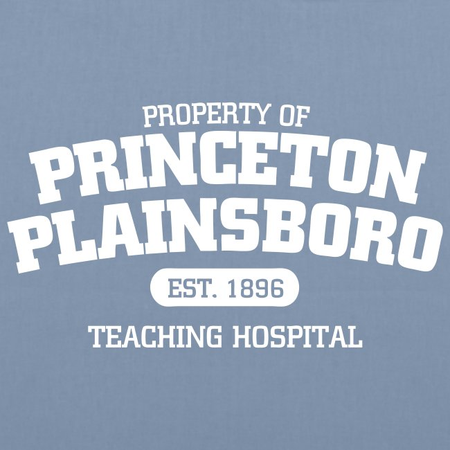 princeton plainsboro