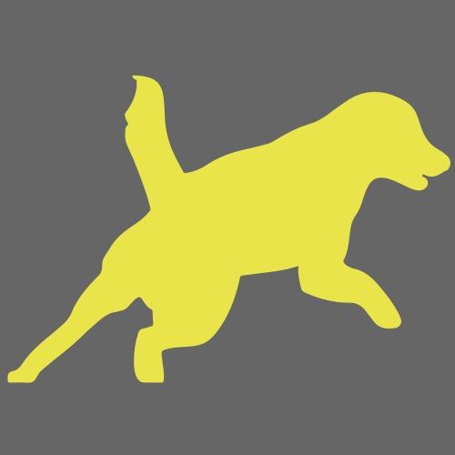 Apportering till vardag och fest hund - Ekologisk tygväska