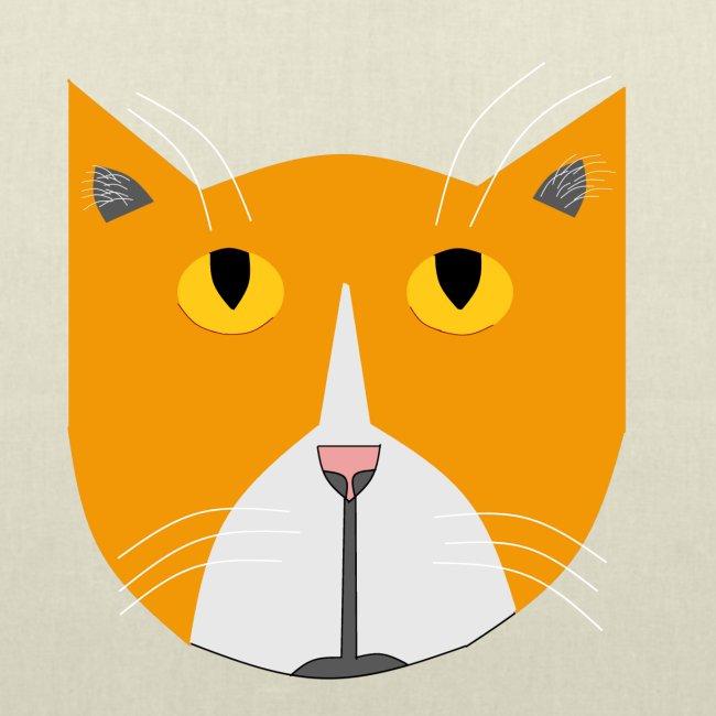 Hieno kissa