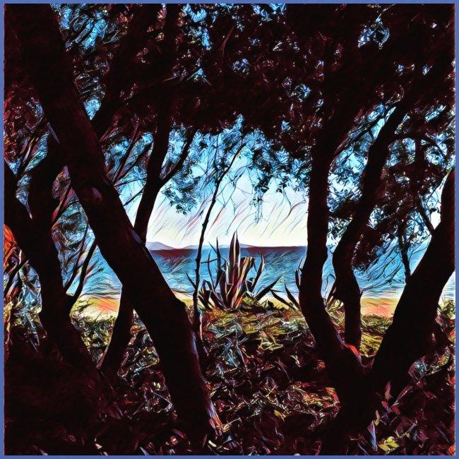 Vista mare dalla pineta
