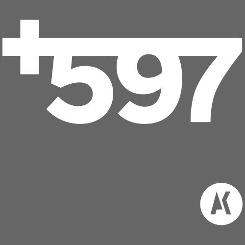 Plus597 Tas W - Tas van stof