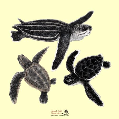 Sea Turtle Hatchlings - Tote Bag