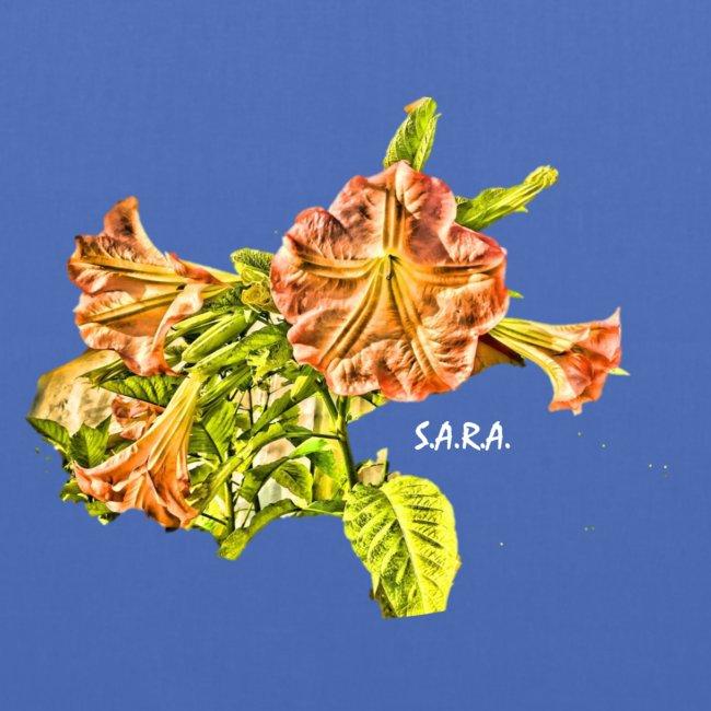 Trompetenbaum Blüten von S.A.R.A.