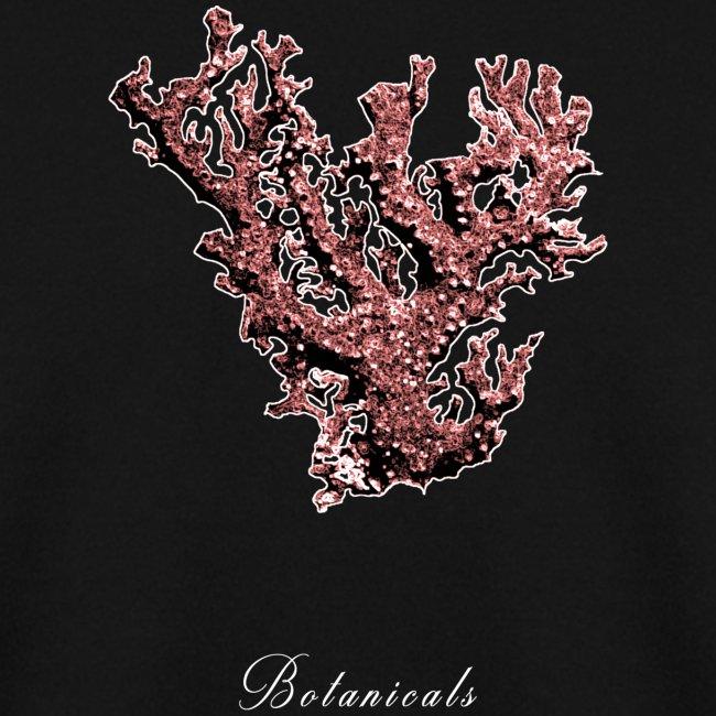 Disegno pianta corallo