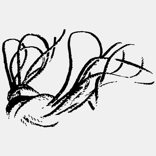 Rope Shibari - Teddy