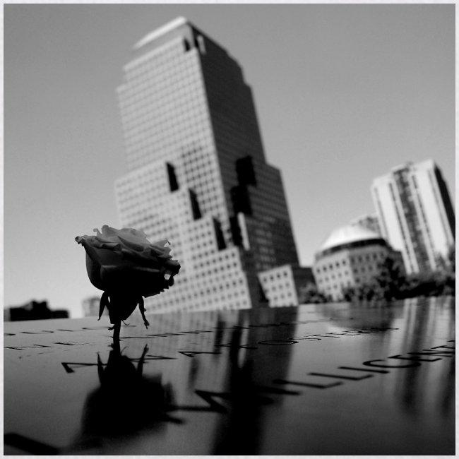 Rosa del ricordo