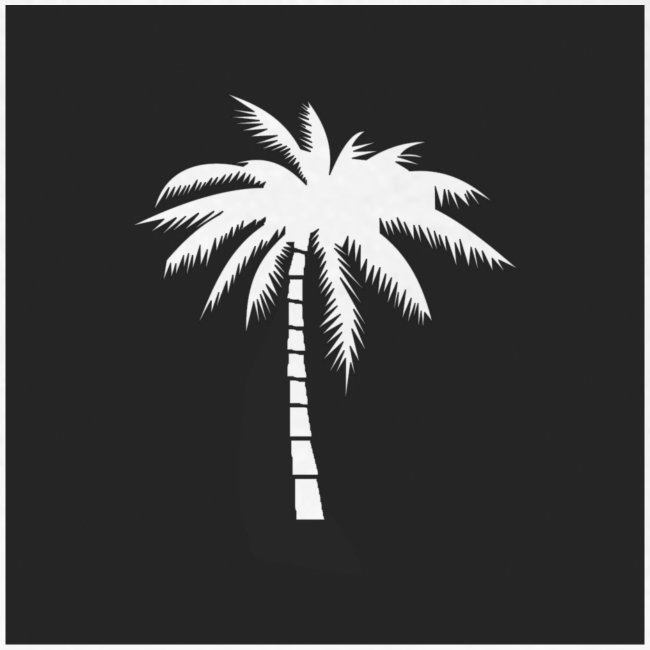 palm black box