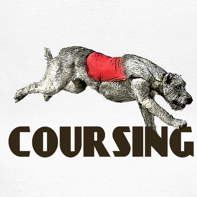 Irish wolfhound 7