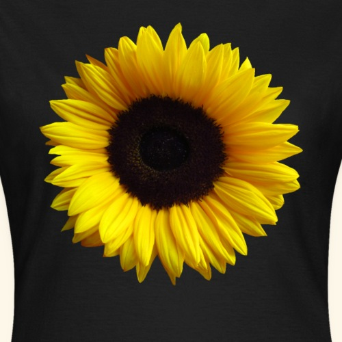 Sonnenblume, Sonnenblumen, Blume, Blüte, floral - Frauen T-Shirt