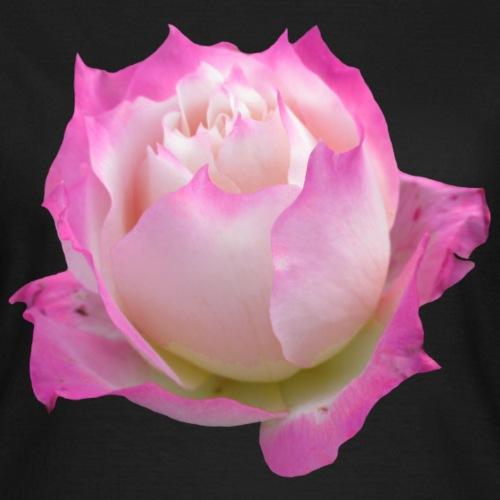 wundervolle Rose in pink, Rosen, Blume, Blüte - Frauen T-Shirt