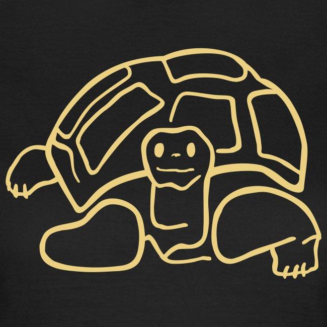 schildkröte landschildkroete aus den seychellen