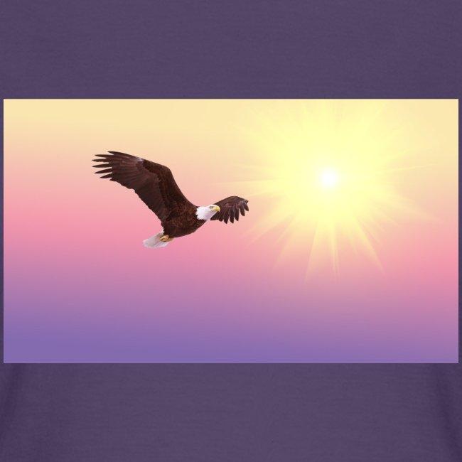 bald eagle 521492 1920