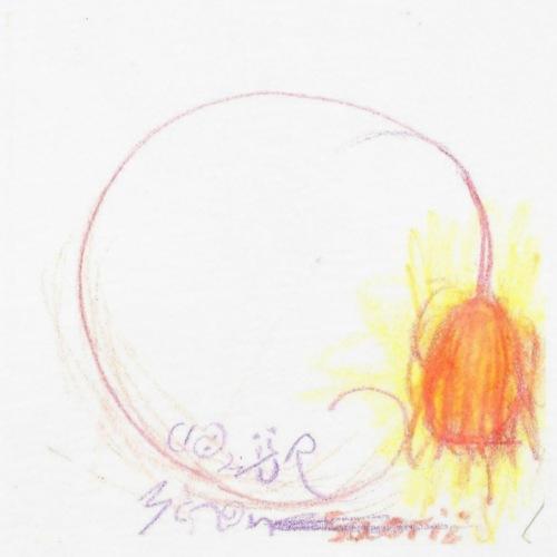 Glühwürmchen Gaorii - Männer Bio-T-Shirt