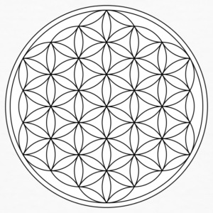flower of Life - Men's Organic T-shirt