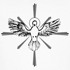 Holy Spirit - Men's Organic T-shirt