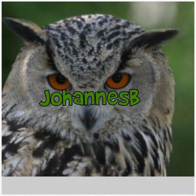 JohannesB lue