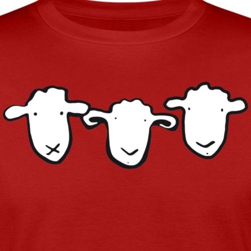 3 Schafe - Männer Bio-T-Shirt