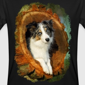 Border Collie dog blue merle in a tree trunk - Men's Organic T-shirt