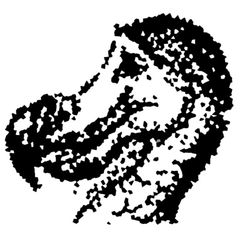 Dodo Fraktur - Männer Bio-T-Shirt