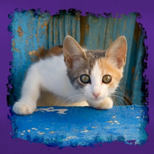 Sweet young kitten looking out of old blue door - Duffel Bag
