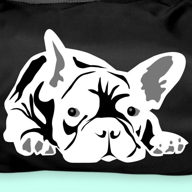 Französische Bulldogge - 3 Farben