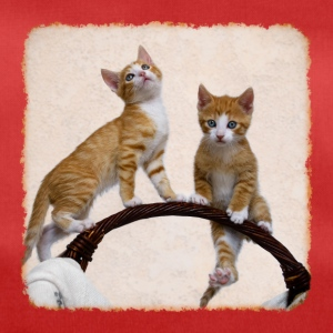 Play Two sweet funny kittens and gymnastics - Duffel Bag