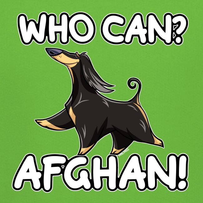 Who Can Afghan IV