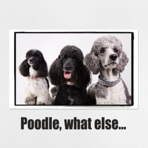 poodle, what else... - Baby T-Shirt