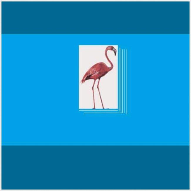 Flamingoscotteri