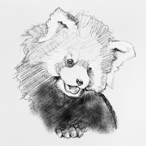 red panda sketch - Baby T-Shirt