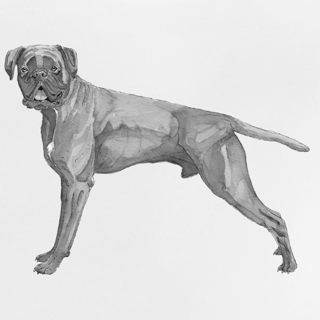 boxer - ink