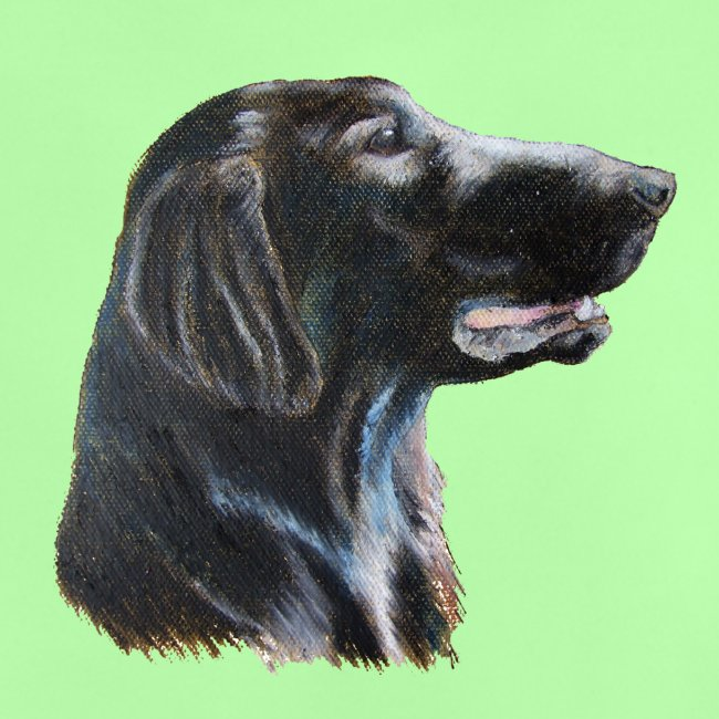 flatcoated retriever color