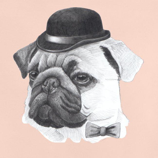 pug with bowler