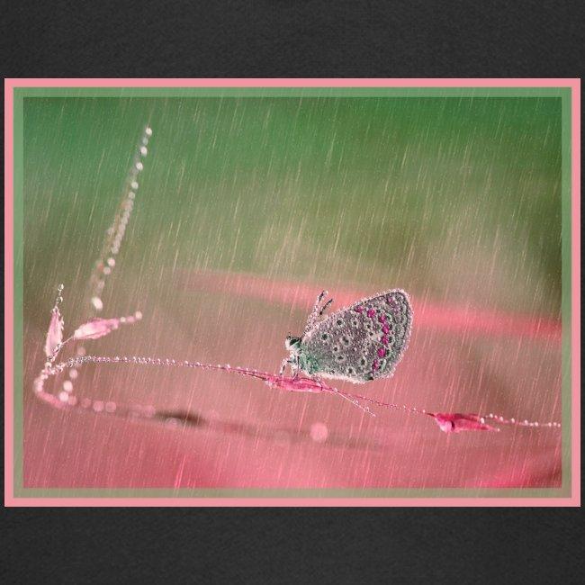 Farfalla nella pioggia leggera