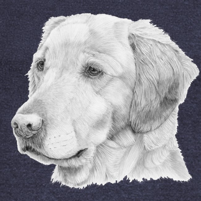 Golden retriever 2