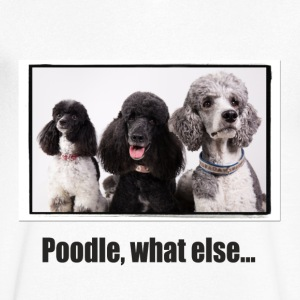 Poodle, what else ... - Men's V-Neck T-Shirt