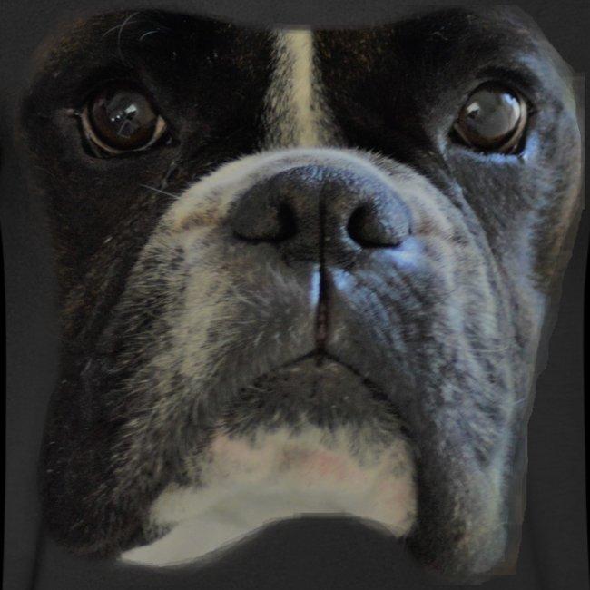 boxer big face