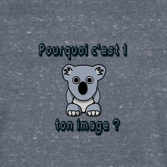 Pkoi c 1 koala ton img ?