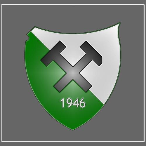 SVS Wappen 2013 - Männer Bio-T-Shirt mit V-Ausschnitt von Stanley & Stella