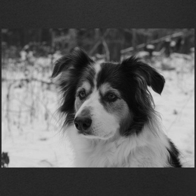 Skippy Winter