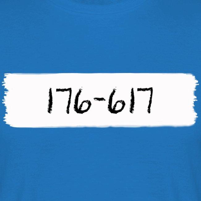 pensel176-617