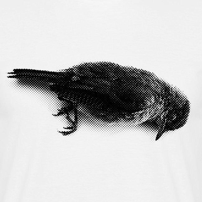 Die bird die !!!