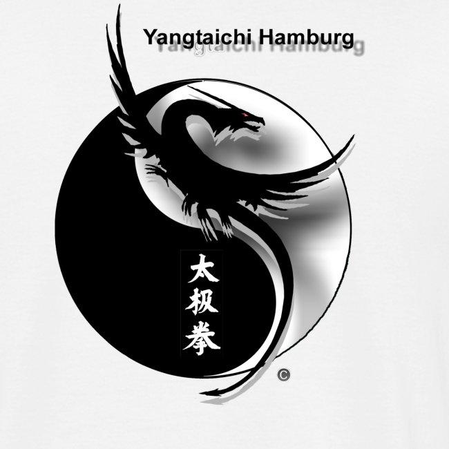 Yangtaichi einfache Peitsche