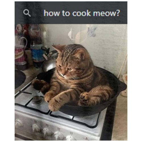 cook meow