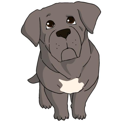 Cane Corso grigio - Maglietta da uomo