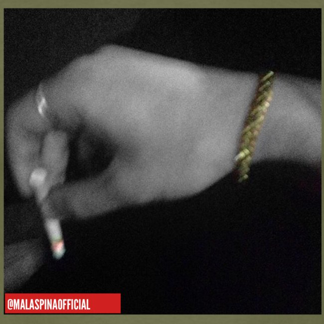 Malaspina   Classic Smoke