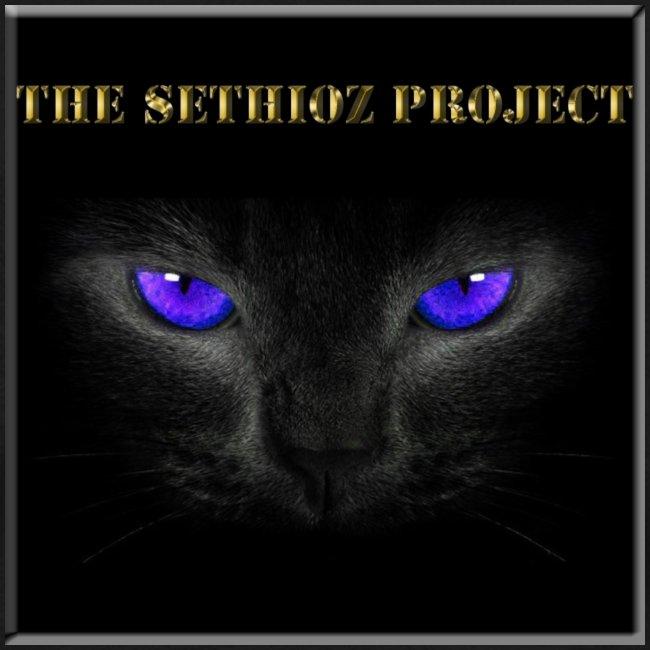 The Sethioz Project Black Cat