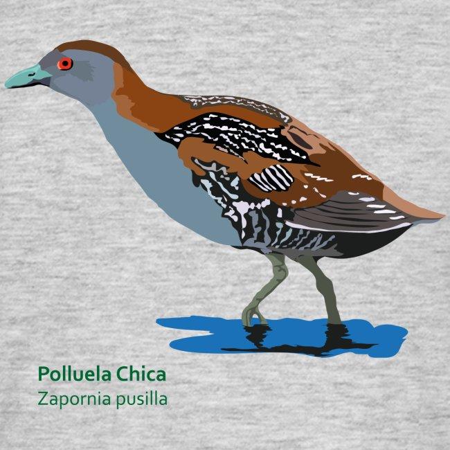 Polluela-Chica